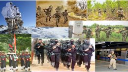 CAPF (Central Armed Police Forces)