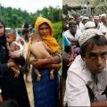 Rohingyas Muslims