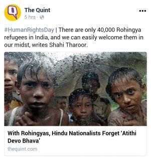 Rohingya opinion