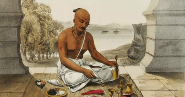 Image result for brahmin
