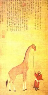 China giraffe