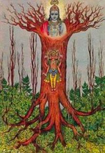 Sacred Upside-Down Cosmic Tree