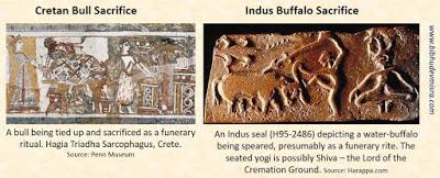 Indus Minoan bull sacrifice