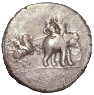 Puru's victory coin