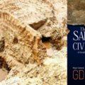 Sarasvati civilization