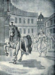 Ashwamedha horse