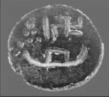 Circular Seal from Persian Gulf
