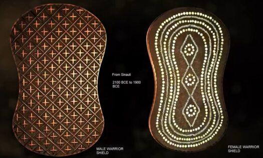 Sinauli shields